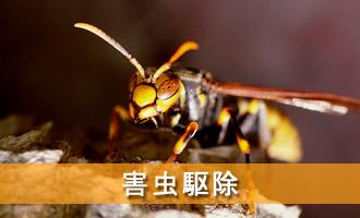 害虫駆除 松くい虫、シロアリ、スズメバチ